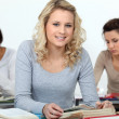 Students in class — Stock Photo #10390633