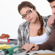 Couple revising together — Stock Photo #10391111