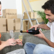 Stock Photo: Couple toasting the new house