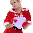 Mrs Claus — Stock Photo #10391880