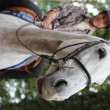 Landscape image of teenager riding horse — Stock Photo