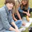 Teens studying — Stock Photo #10405129