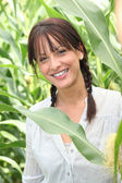Woman in a maize field — Stock Photo