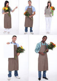 Montage of several florists — Stock Photo
