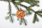Ball hung on a Christmas tree — Stock Photo