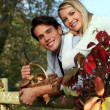 Couple with basket of mushrooms - Lizenzfreies Foto