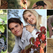 Mosaic of couples enjoying nature — Stock Photo