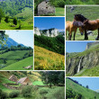 Stok fotoğraf: Various countryside images