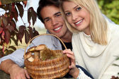 Couple collecting chestnuts and mushrooms in the forest — Stock Photo
