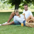 Couple picnicking in the countryside — Stock Photo