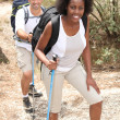 Mixed couple rambling through nature with walking pole — Stock Photo #10519753