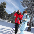 Retired couple cross-country skiing — Stock Photo