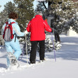 Couple returning to their chalet after skiing — Foto de Stock