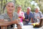 Seniors Picnic in the field — Stock Photo