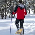 Man walking through the snow — Stock Photo
