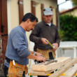 Stock Photo: Two carpenters working on same job