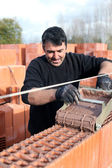 Mason carefully pouring cement on wall — Stock Photo