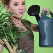 Woman watering a houseplant — Stock Photo