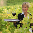 Smiling waitress with wine in a vineyard — Stock Photo