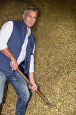Man working in a barn — Stock Photo