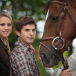 Stock Photo: Two young and horse