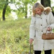 Stock Photo: Middle-aged womstrolling through woods with basket