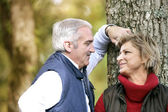 Loving couple enjoying a romantic walk in the park — Stock Photo