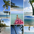Mosaic of tropical island — Stock Photo