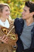 Couple gathering chestnuts in basket — Stock Photo