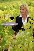 Waitress in a vineyard — Stock Photo
