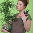 Young woman holding a flowerpot — Stock Photo