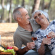 Senior couple having a romantic picnic in the park — Stock Photo