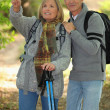 Couple hiking in the woods — Stockfoto