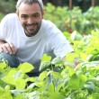 Man in his garden — Stock Photo #8101605