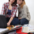 Two female friends studying. — Stock Photo