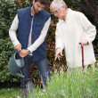 Stock Photo: Gardener watering flowers in garden and elderly lady making comments