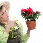 Little girl spraying a houseplant — Stock Photo