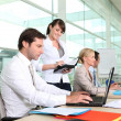 Busy office team — Stockfoto #8108537