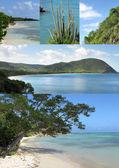 Beautiful and exotic island, sea, coasts — Stock Photo