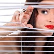 Stock Photo: Wompeering through some blinds