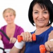 Foto Stock: Mature women working out