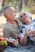 Old couple taking a picnic beside trees — Stock Photo