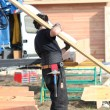 Carpenter holding planks - Stockfoto