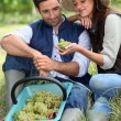 Couple in field eating grapes — Stock Photo