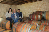 Three drinking wine in a cellar — Stok fotoğraf