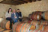 Tres bebiendo vino en una bodega — Foto de Stock