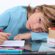 Child doing homework — Stockfoto