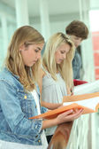 Students reading assignments — Stock Photo