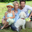 Family with dog sat in field next to basket of vegetables — Stock Photo