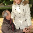 Couple gathering chestnuts in basket — Stockfoto